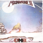 Camel-moonmadness