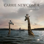 07 Carrie Newcomercover