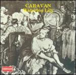 Caravan-_Waterloo_Lily